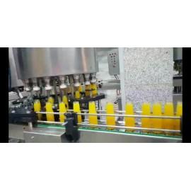 خط کامل بسته بندی بطری شیشهای طرح رانی N15